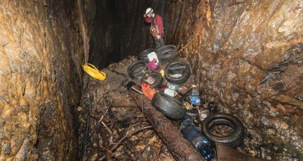 Crime ambiental – limpeza voluntária salva população, fauna e flora