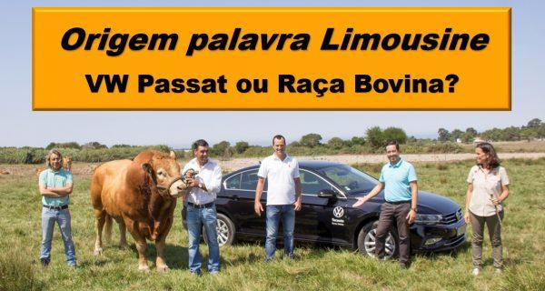 Vídeo: Origem da palavra Limousine – VW Passat ou Raça Bovina?